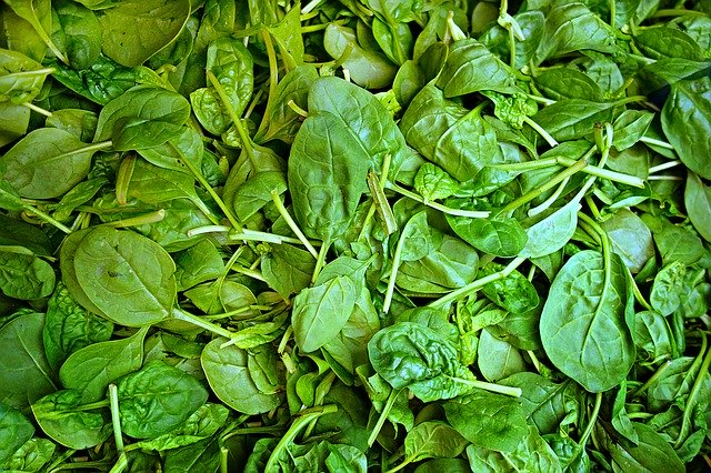 cooking spinach